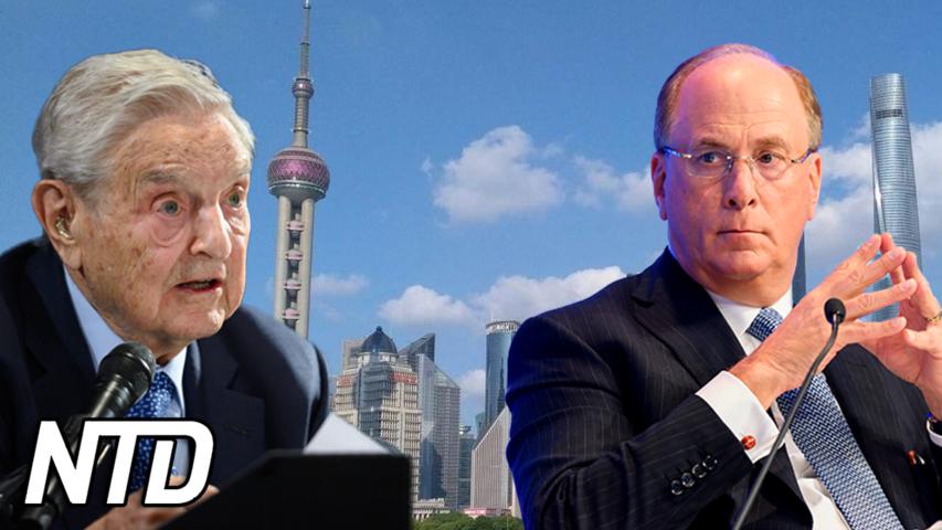 BlackRock svarar på Soros kritik angående Kina | NTD NYHETER