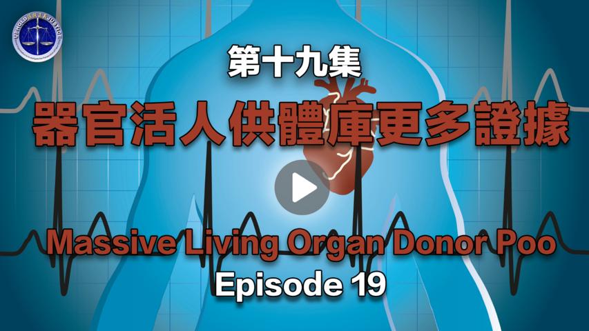 【鐵證如山系列講座】第19集 器官活人供體庫證據七、八、九   Episode 19  Massive Living Organ Donor Pool