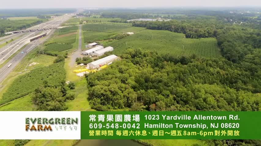 (2021) 常青果園 Evergreen Farm 8~10月水果豐收
