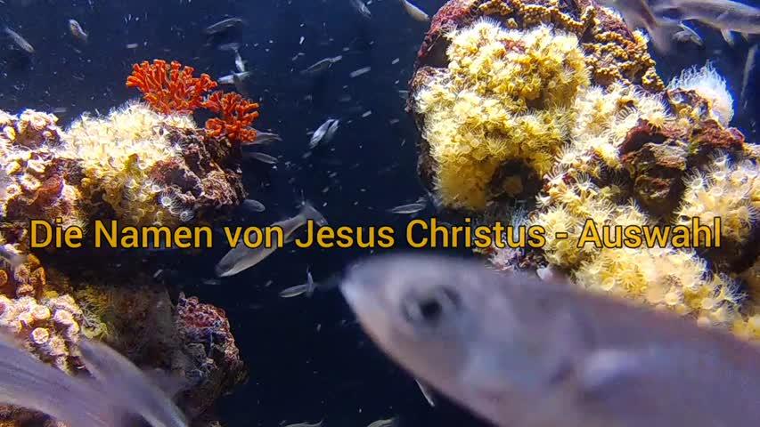 Namen von Jesus Christus aus der Bibel