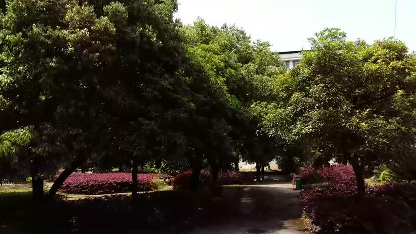 A wonderful sunny day !
