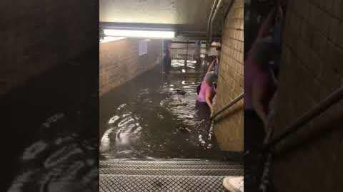 今天纽约暴雨,地铁被淹视频疯传!!也是醉了!~