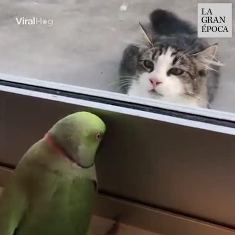 """""""Peek-a-boo"""" 😂😂"""