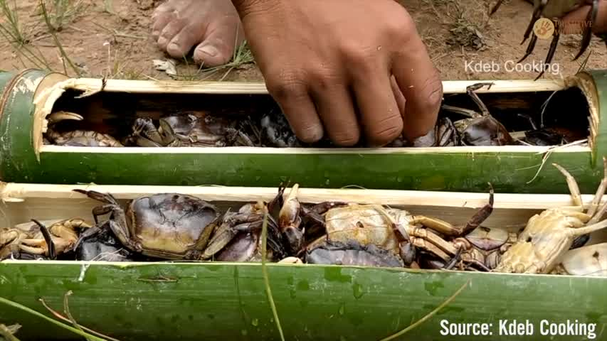 Cooking Field Crabs in Bamboo