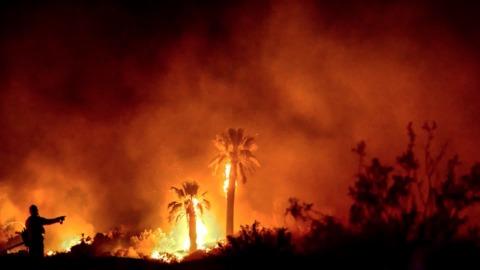 CA: Man Sentenced To 5 Years For Joshua Tree Arson