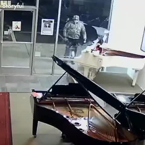 Funny thieves caught on camera 😃