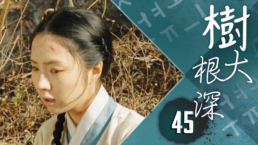 樹大根深 45|李裪宣布了發表韓文的日子,這讓鄭基準陷入了緊張與混亂中  ...|宋仲基、申世景|韓劇迷