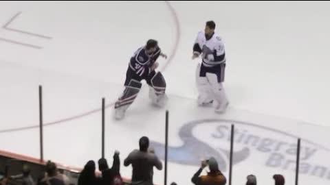 When Hockey Goalies Fight