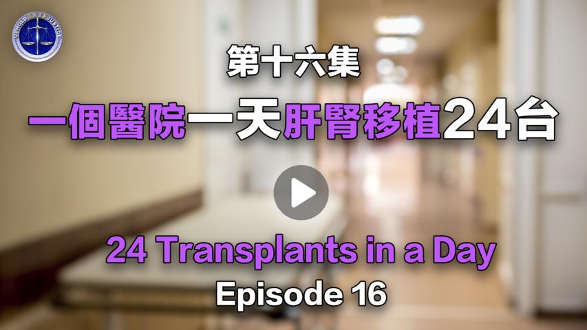 【鐵證如山系列講座】第16集 一個醫院一天肝腎移植24台   Episode 16   24 Transplants in a Day