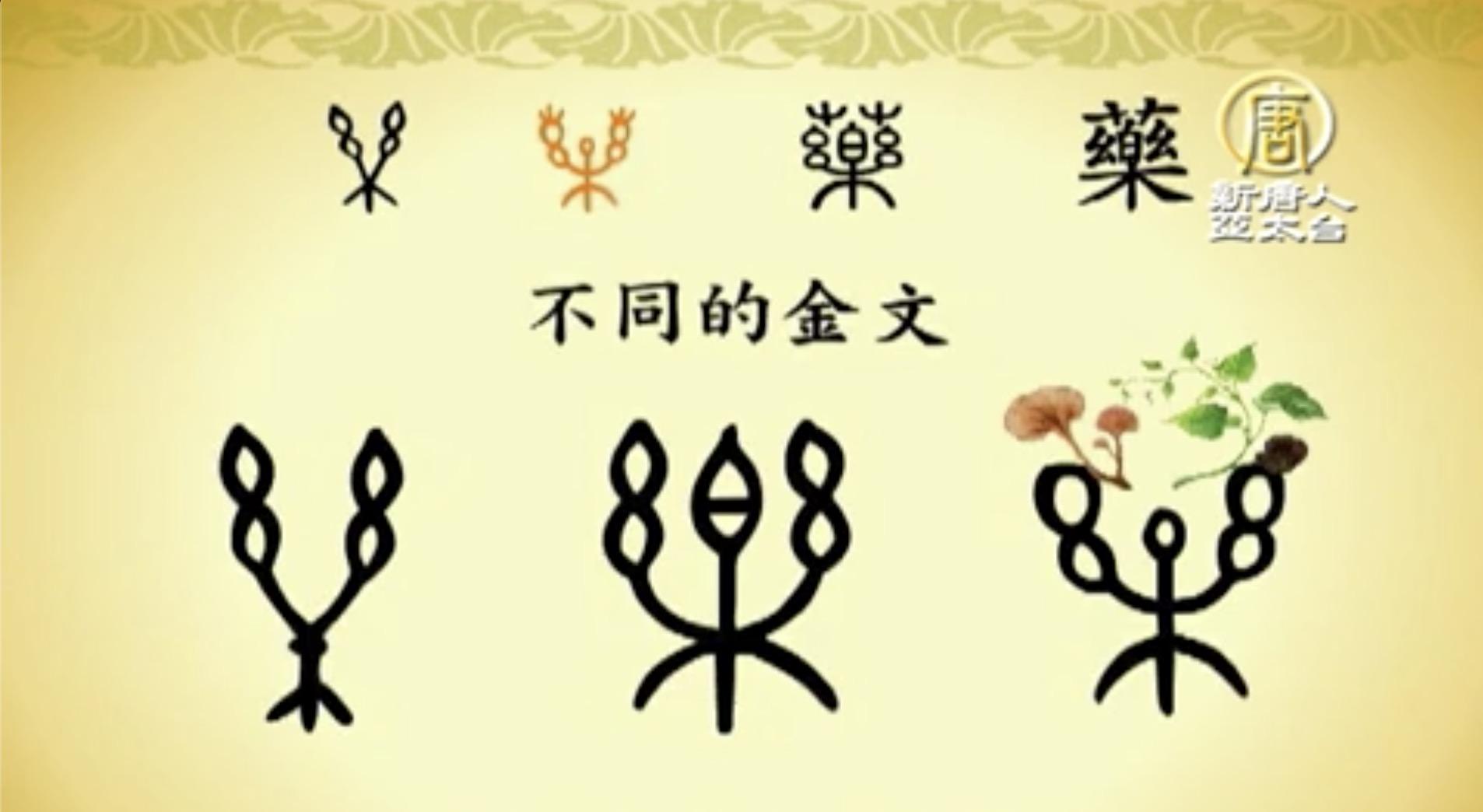 漢字動畫《悠遊字在》:說藥