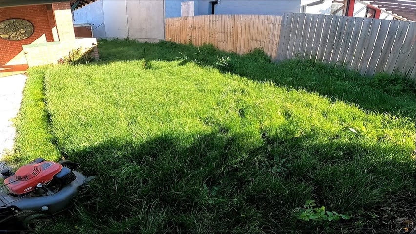 I was Astonished at the length of this Grass // Relaxing Edging & Mowing