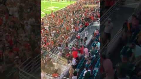 在迈阿密的一场橄榄球比赛中,一只流浪猫从上层甲板掉下来,球迷用美国国旗接住了它,救了它。救下的瞬间,全场高呼!
