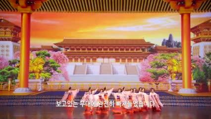 션윈 관람평 - '지상 최고의 공연'