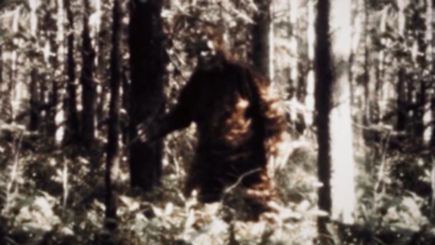 Sasquatch  2021  Official Trailer  Crime  Documentary  History