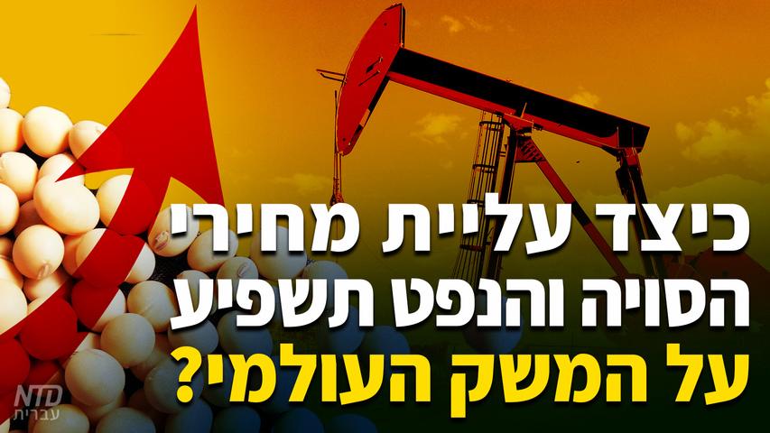 כיצד עליית מחירי הסויה והנפט תשפיע על המשק העולמי?