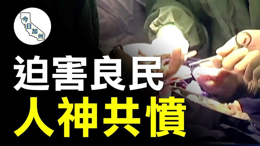 譴責中共活摘器官 洛僑領:無法容忍