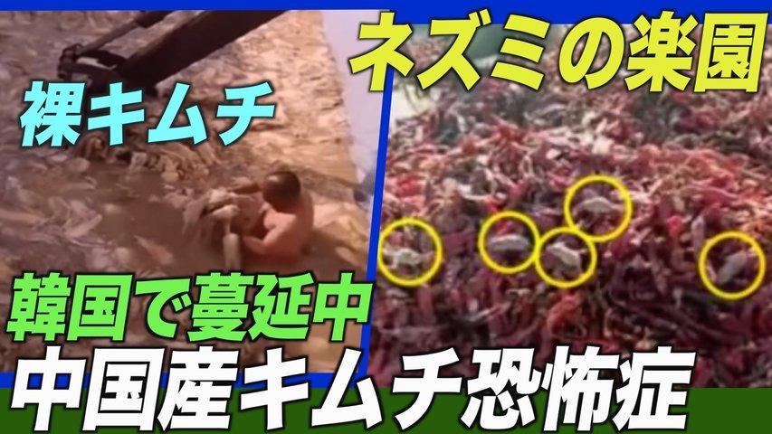 韓国で「中国産キムチ恐怖症」が蔓延 輸入量が3割減【禁聞】