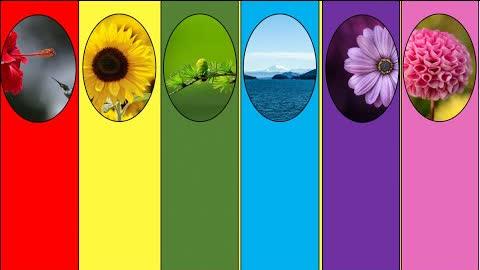 你喜歡的顏色吸引哪種能量 | 色彩性格 色彩能量 色彩心理學 | 馨香雅句第68期