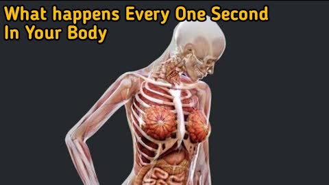 What happens every one second in your body