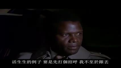 The Organization 02: 神探勇闖毒龍潭 02
