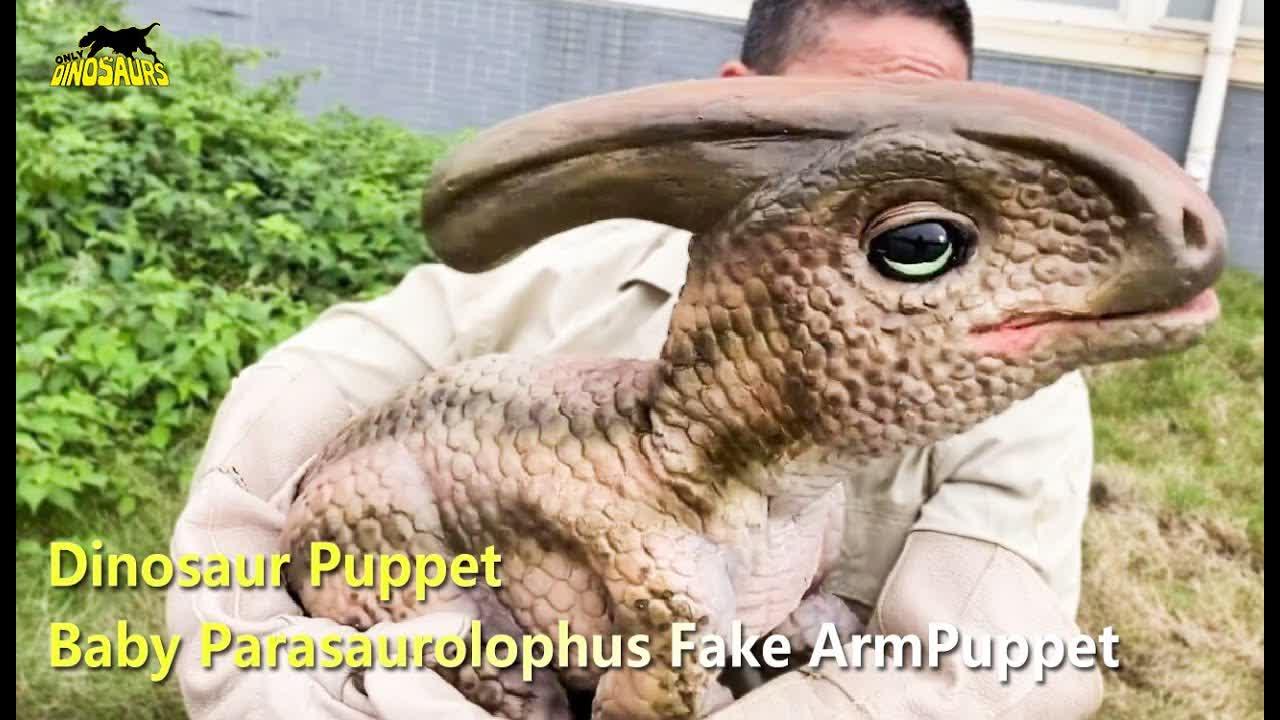 Dinosaur Puppet: Baby Parasaurolophus Fake Arm Puppet | Puppets