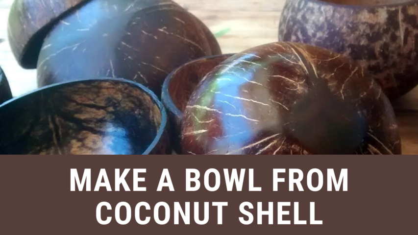 Make a Bowl from Coconut Shell