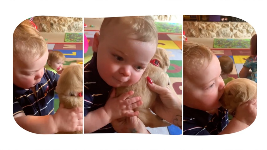 Adorable Toddler Gives Hugs and Kisses to Puppy