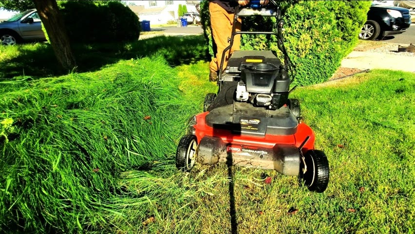 Son Struggles To Keep Lawn Mowed After Mother Dies