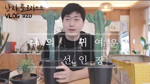 [SUB][#20 남자 플로리스트 브이로그] 귀여운 선인장을 심어볼께용 / Korean Male Florist VLOG #20 Cute Cactus