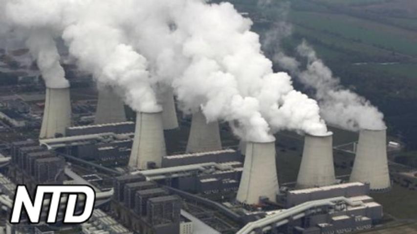 Kina står inför elbrist när vintern närmar sig | NTD NYHETER