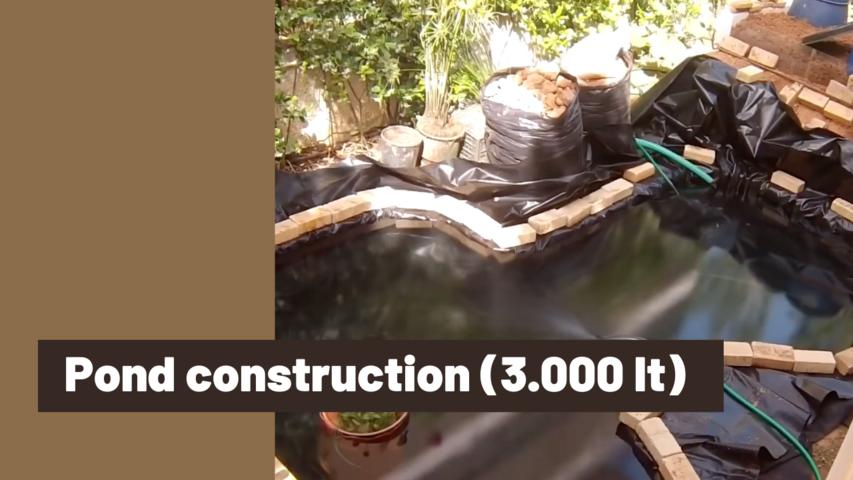 Pond construction (3.000 lt)