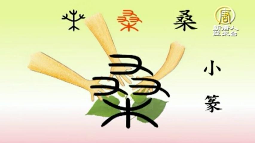 漢字動畫《悠遊字在》:說桑