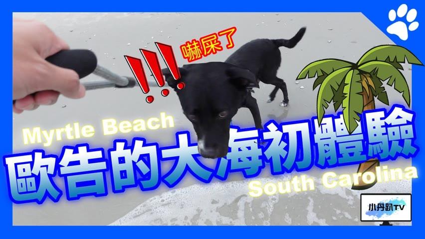 這輩子第一次看到海水的歐告是什麼反應?開了三個多小時的車,來到渡假聖地Myrtle Beach!開箱海景飯店和觀光步道,歐告卻不捧場…| 小丹趴TV