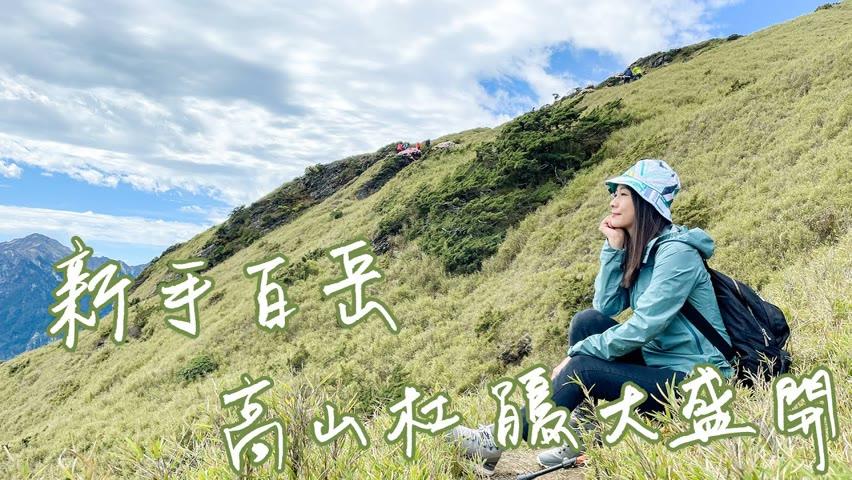 【南投登山】合歡山高山杜鵑大盛開!第一次登百岳就上手~來石門山、東峰步道,必看美景報你知!全台海拔最高住宿和咖啡廳就在這一集|1000步的繽紛台灣(Ep379)