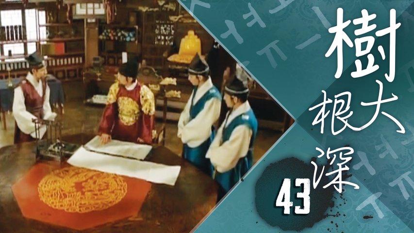 樹大根深 43|請求世宗收回成命,但世宗說會為他準備必要的東西 ...|宋仲基、申世景|韓劇迷