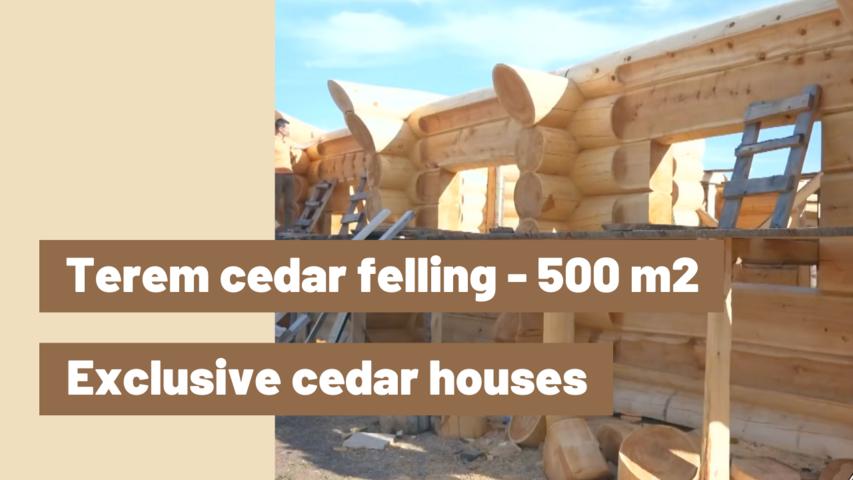 Exclusive cedar houses