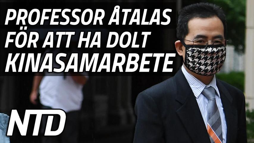 Professor åtalad för att ha dolt samarbete med Kina under rättegång | NTD NYHETER
