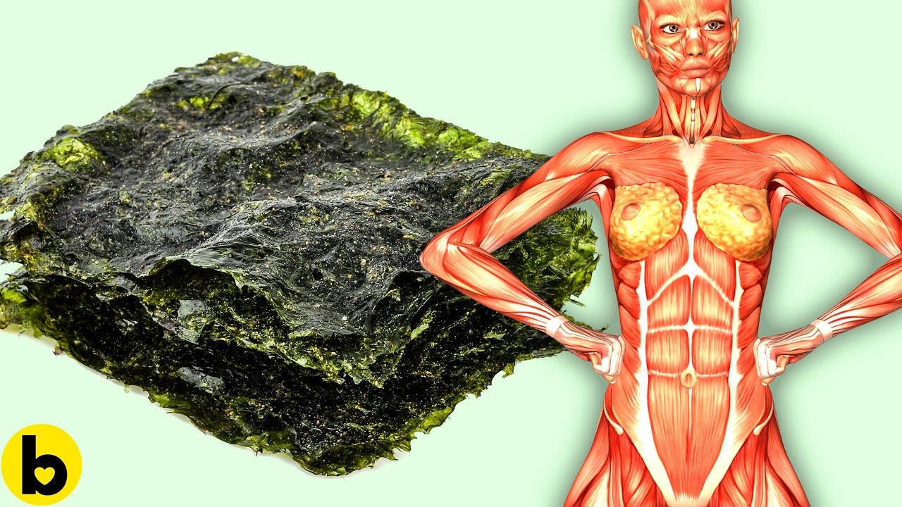 Eating Seaweed Everyday Will Do This To Your Body