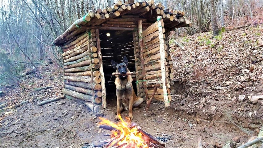 Log Cabin Building in the Woods - Off Grid Living, Overnight Bushcraft Camping, Survival Skills