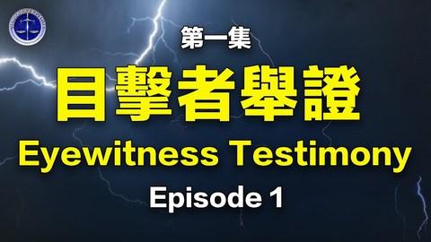 【鐵證如山系列講座】第01集-追查國際簡介-活摘現場目擊者證詞 Episode 1 Eyewitness Testimony