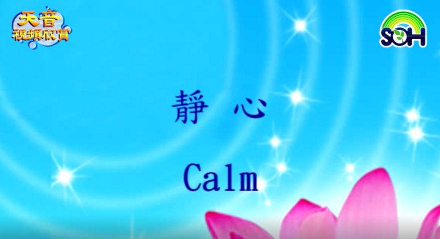 【天音視頻】靜心