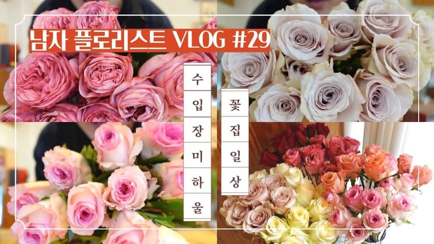 [SUB][#29 남자 플로리스트 브이로그] 콜럼비아 장미는 항상 예쁘다 / 수입장미 하울 / 부케 만들기 / Korean Male Florist Vlog