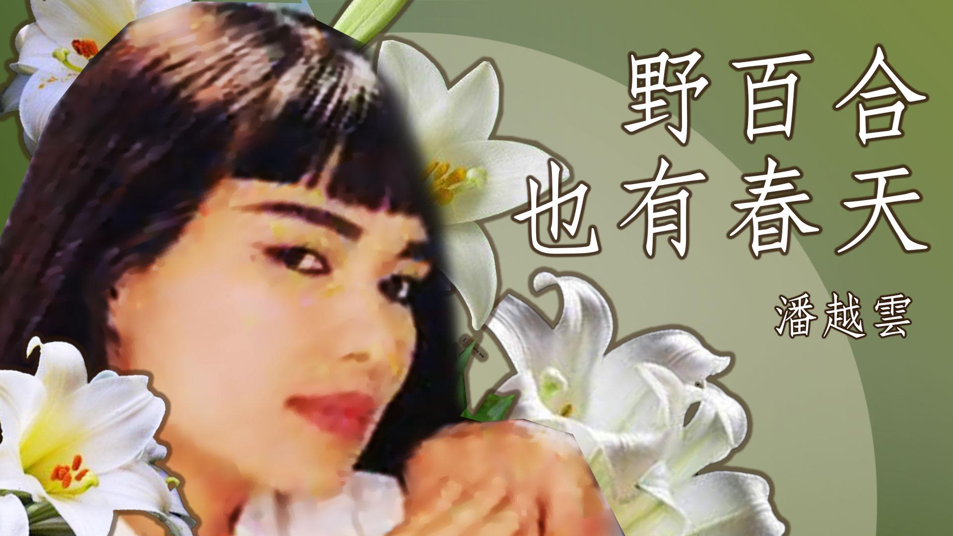 潘越雲 01 |  野百合也有春天