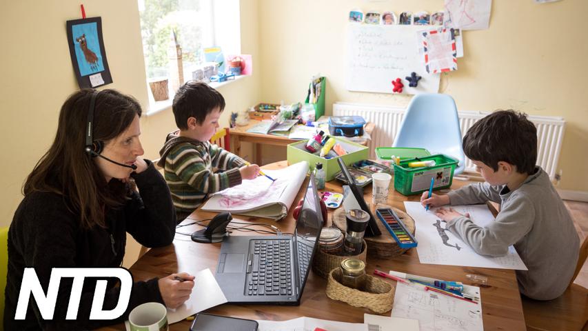Studie: Att arbeta hemifrån är mindre effektivt   NTD NYHETER