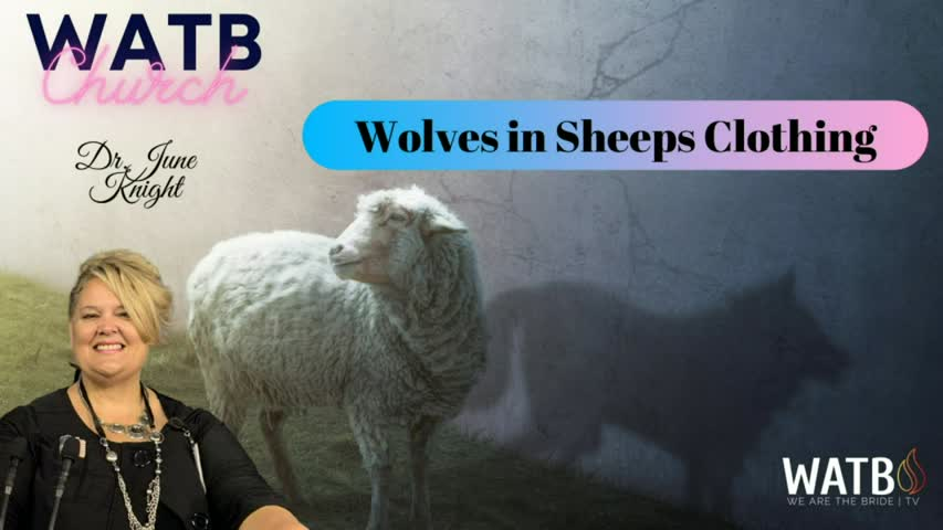 WOLVES IN SHEEPS CLOTHING - What is NAR? False Prophets? & Definitions You Need to Know