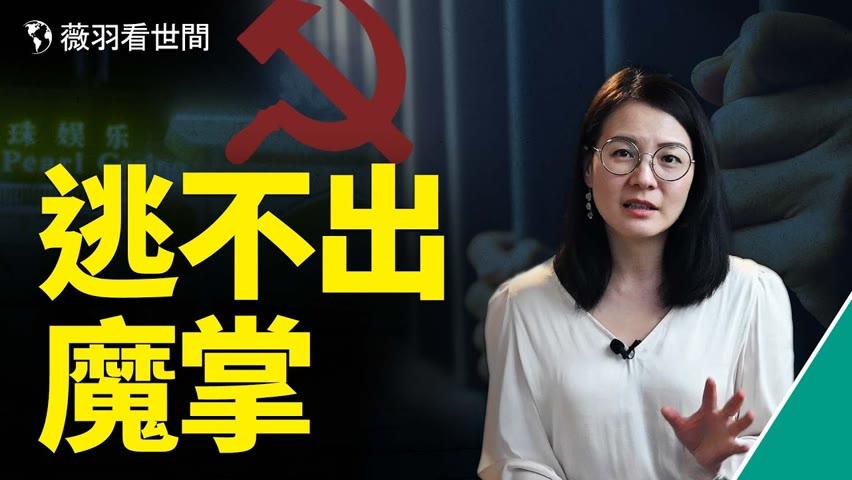他們被賣給詐騙集團,失去自由,卻求助無門,他們是中國的棄兒,黑手的目標。 薇羽看世間 第375期 20210920