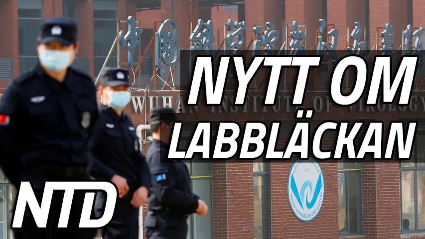Lagförslag som häver sekretessen på Wuhanlabb godkänns | NTD NYHETER