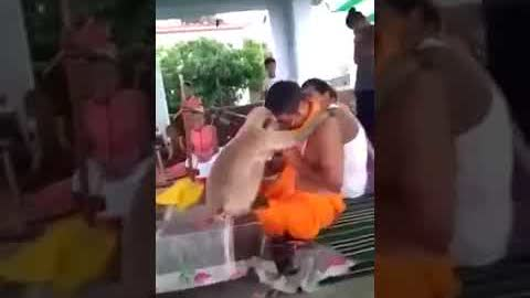 Hanuman ji appearing in the form of a monkey and blessing the bhajan singer