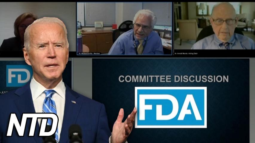 FDA-panel avvisar påfyllnadsdoser I omfattande skala | NTD NYHETER