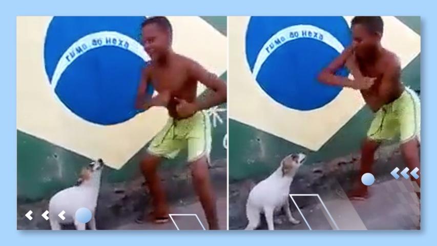 Dog Does Brazilian Dance with Boy